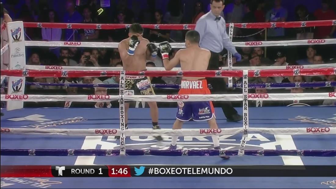 Rodríguez vs Narváez